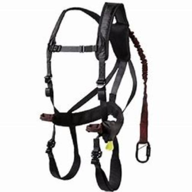 Where to find SAFETY HARNESS in Bigfork
